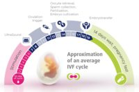 IVF monthly cycle iaso ivf center cyprus