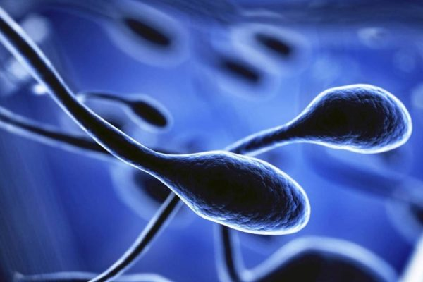 sperm analysis iaso ivf center cyprus