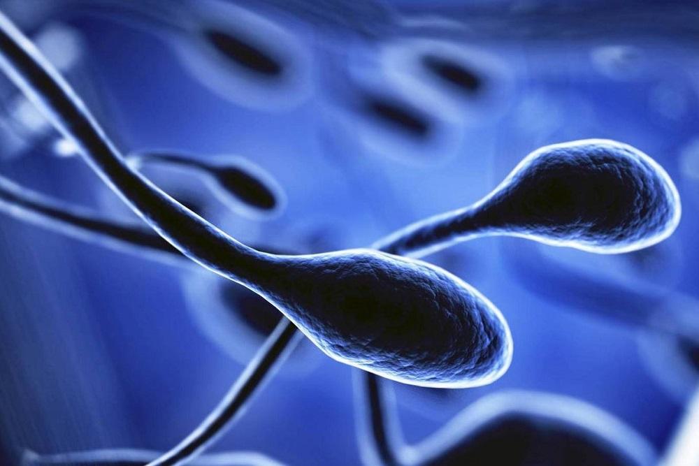 sperm analysis iaso ivf center cyprus