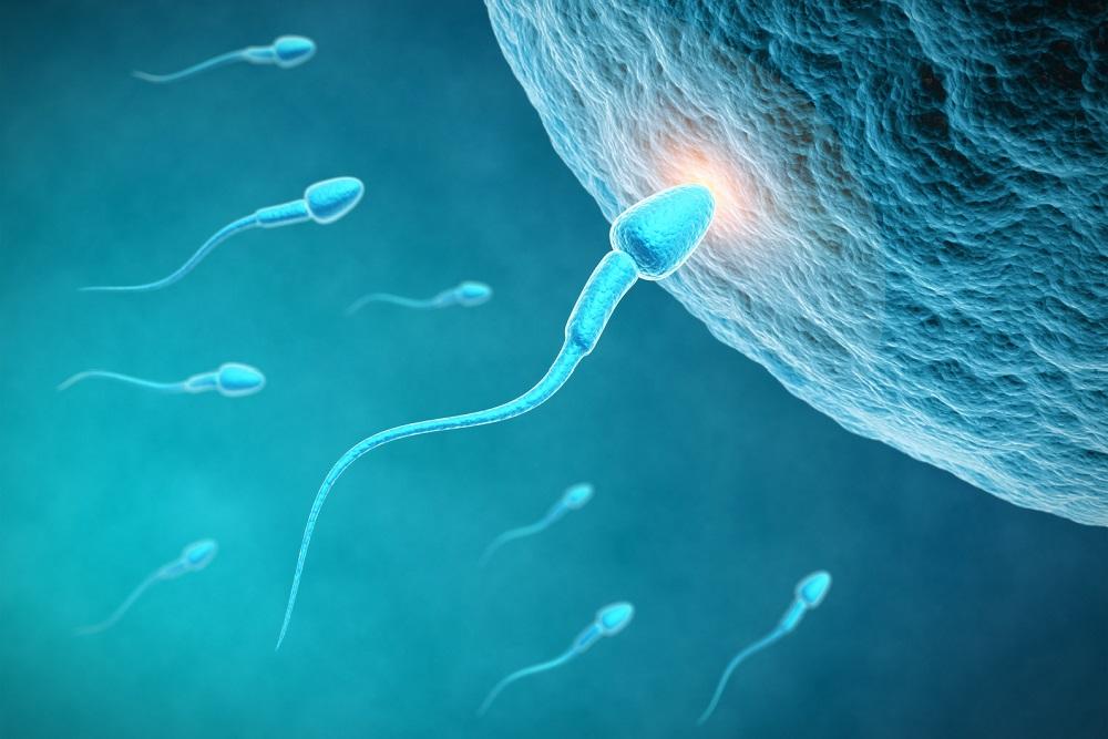 Sperm DNA iaso ivf center cyprus
