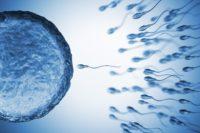 sperm iaso ivf center cyprus